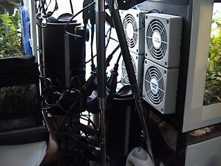 ケージ2008年8月30日1