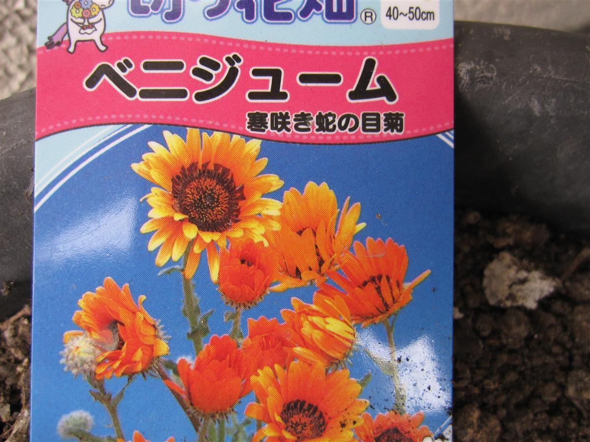 016_20100128190143.jpg