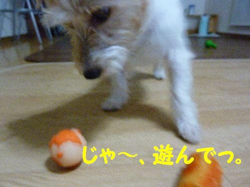 じゃ~、遊んでっ。
