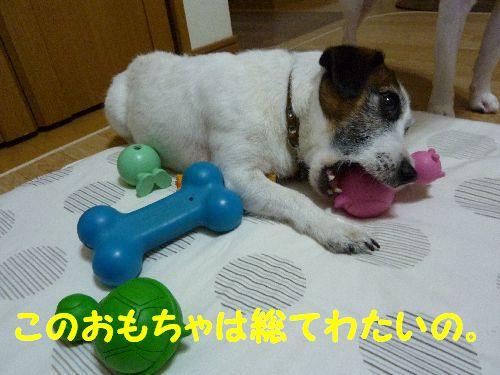 このおもちゃは総てわたいの。