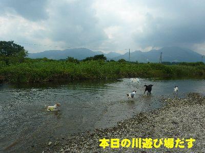 川遊びじゃ