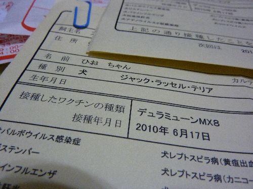 P1100639.jpg