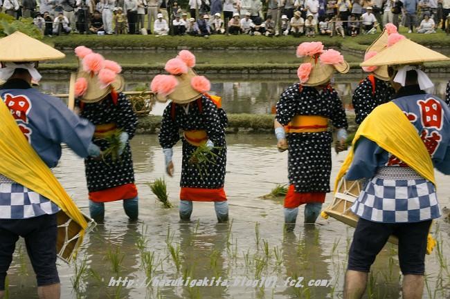 お田植え祭0791-s