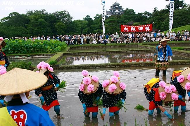 お田植え祭0798-s