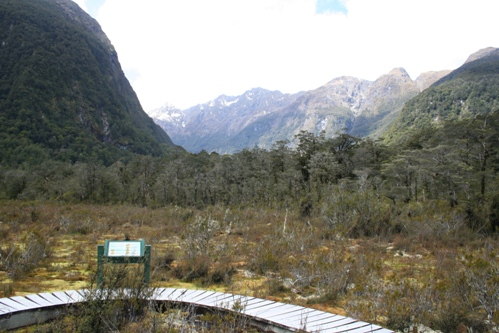 070418 Milford Track