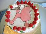 ケーキよ~