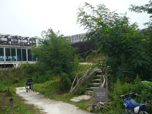 syaruma200810111.jpg