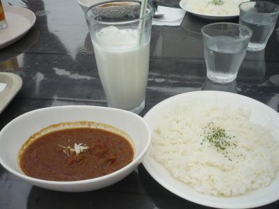 syaruma200810114.jpg