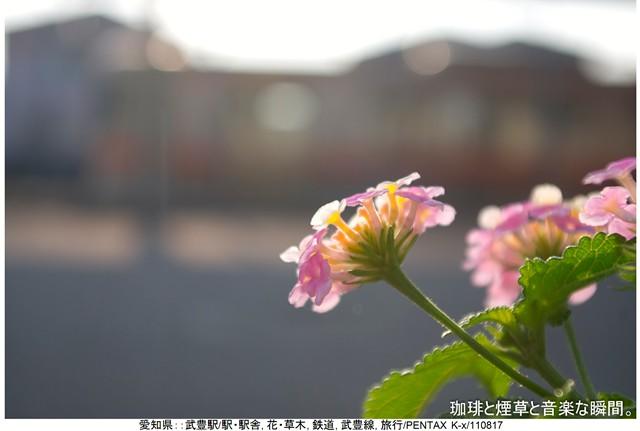 RY-岐阜名古屋横-08