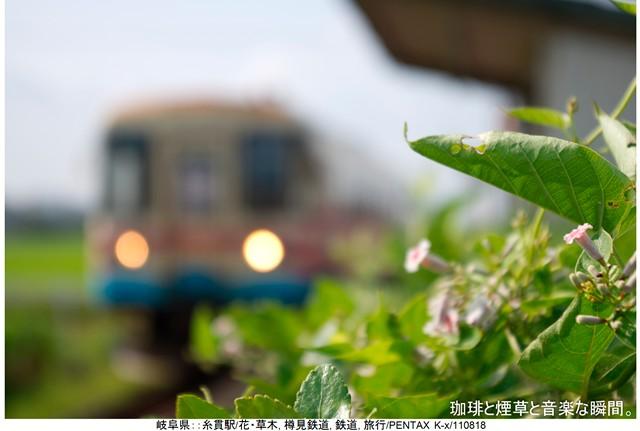 RY-岐阜名古屋横-19