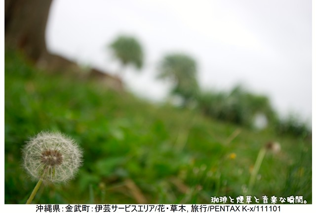 RY-ブログ横3-04
