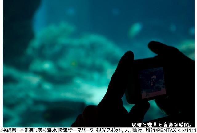RY-ブログ横3-09