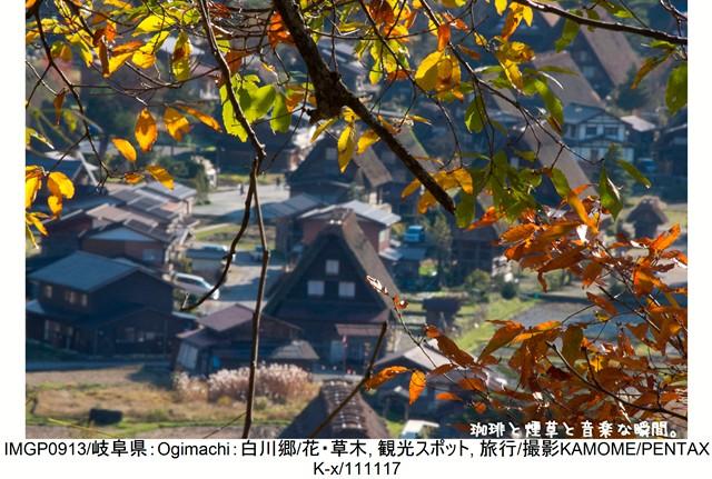 RY-飛騨横-45