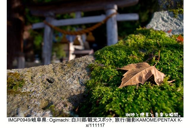 RY-飛騨横-50