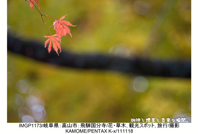 RY-飛騨横-75