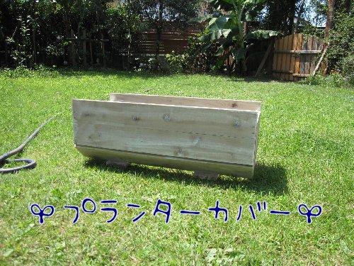 Img_8498_20090909172921.jpg