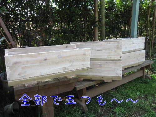 Img_8500_20090909175415.jpg
