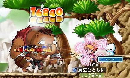 Maple0002_20090515135349.jpg