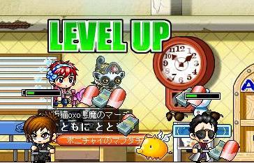 Maple0012_20090621100250.jpg
