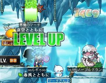 Maple090808_140256.jpg