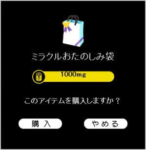 ミラクルお楽しみ袋.jpg