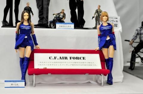 C.F.A.F. in miniture show (4)