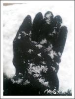 綿雪ふわり。