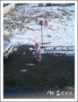 雪下ろし。
