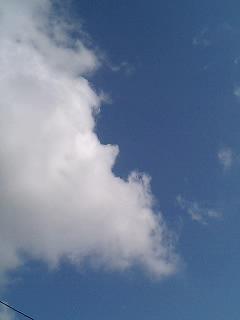 良い天気だ。