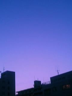 春らしい暖かさです。空も綺麗。