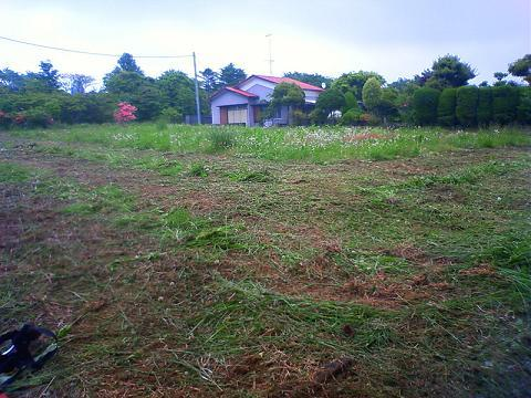 草刈中の畑
