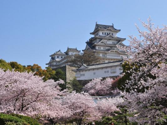姫路城 D90+VR18-200