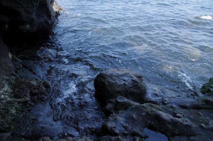 2010721_49.jpg