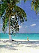 ケイマン島