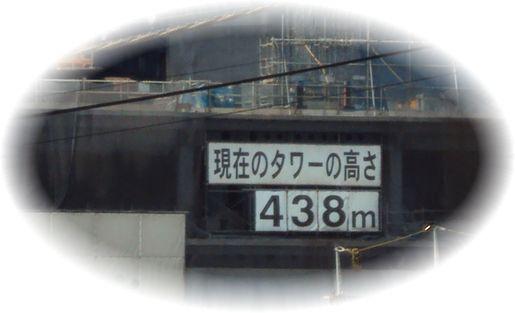 DSC02503_20100905210610.jpg