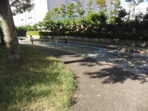 ooyoko5.jpg