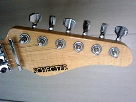 schecter_ex