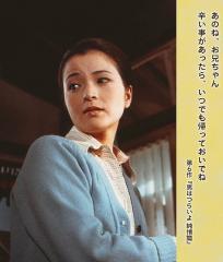 sakura_main-s.jpg