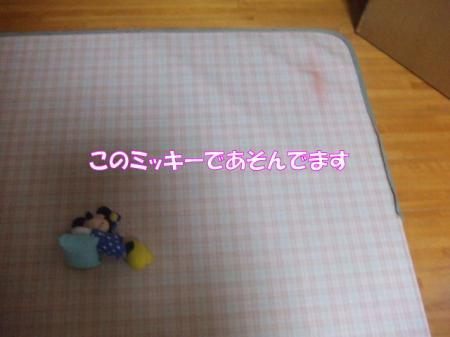 2009_0204pasa2-360006.jpg