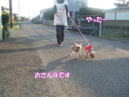 2009_0207pasa2-360011.jpg