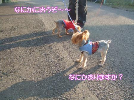 2009_0207pasa2-360012.jpg