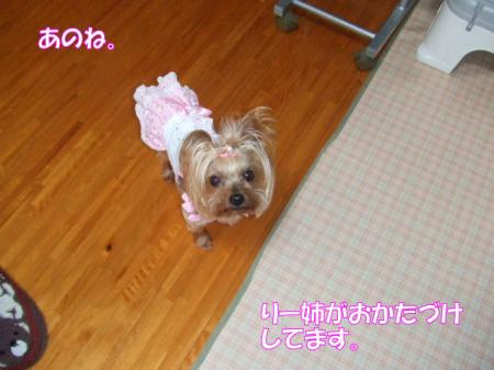 2009_0323pasa2-360001.jpg
