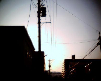 IMG_0037r.jpg