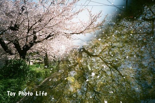 natura3.jpg