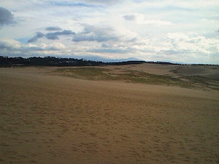 鳥取砂丘3