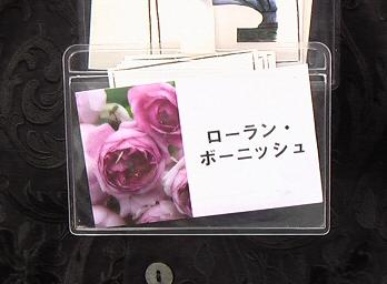 10baraIMGA0018.jpg