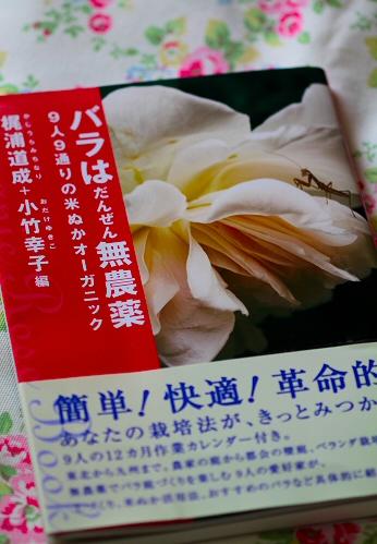 10baradanIMG_2195.jpg