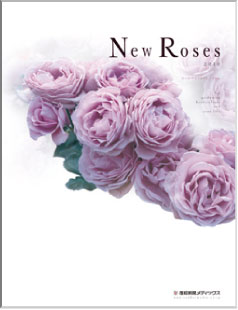 New Roses 2010