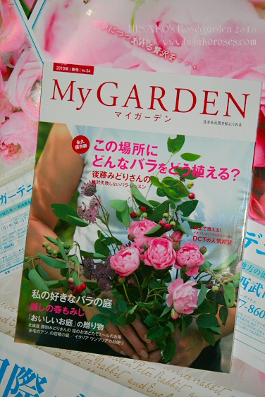 「My Garden」