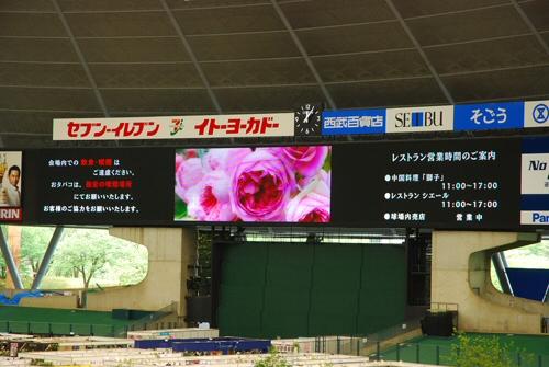 国際バラとガーデニングショウ atsuyaさんから